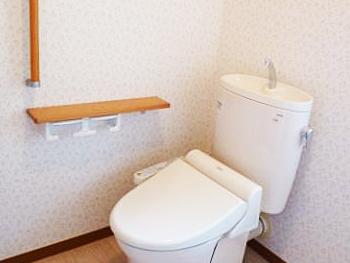 洋式のトイレになり、転倒の心配がなくなりました。ありがとうございました。